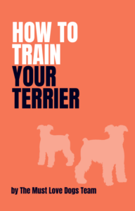 How to Train Your Terrier
